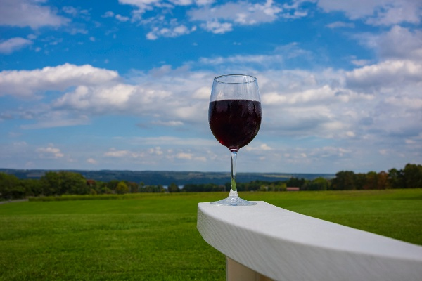 Glass of wine in Ithaca